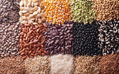 Alimenti e Infiammazione